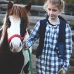 konie (14)