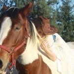 konie (22)