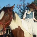 konie (23)
