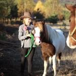 konie (33)